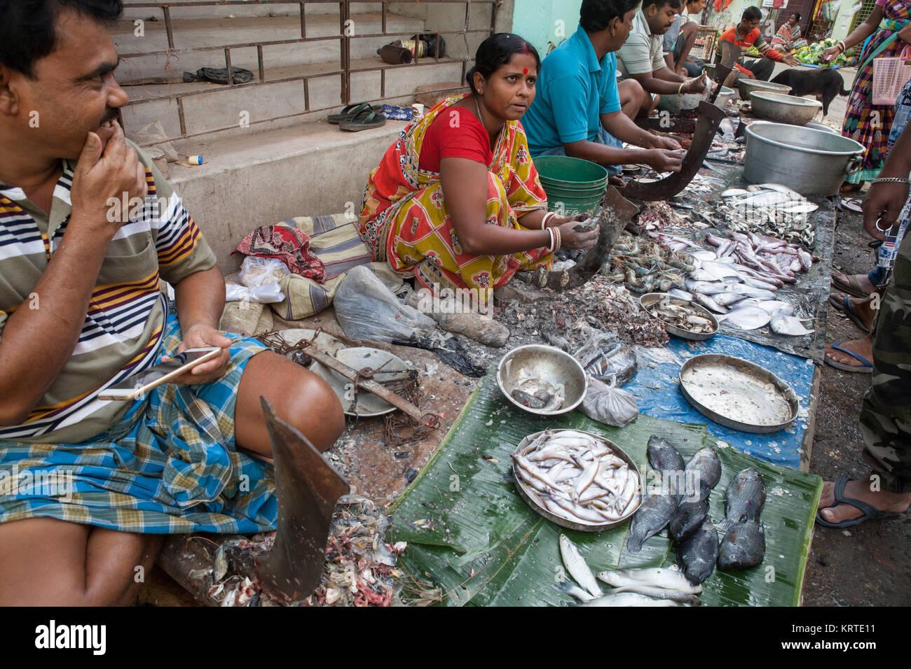 Fish market in the Garia district of Kolkata, India - Stock Image