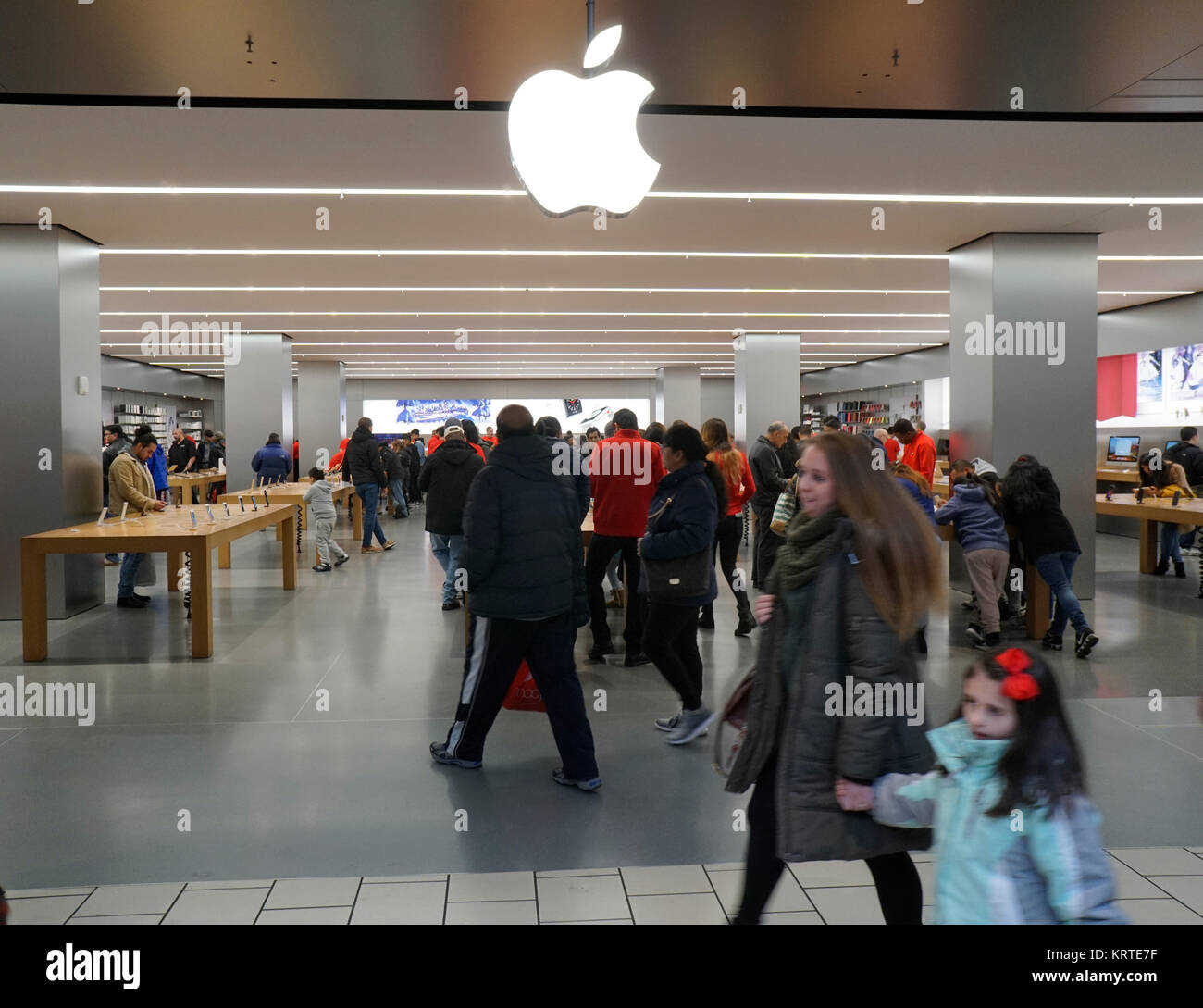 Apple store queens mall
