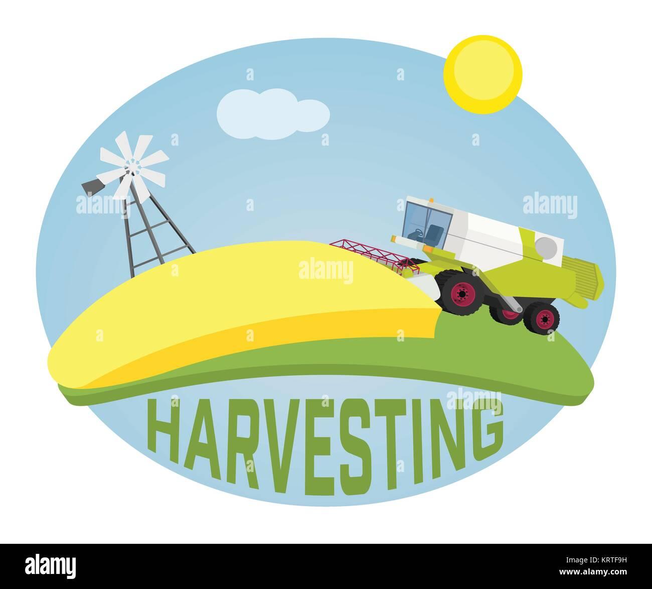 Combine harvester on a wheat field against sun. Farm rural landscape, vector background - Stock Vector