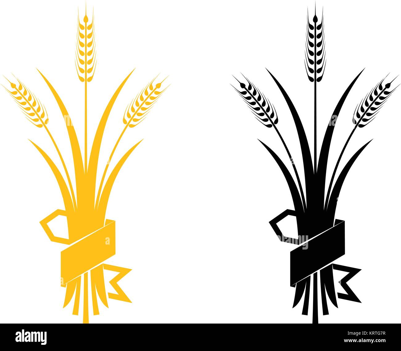 ears of wheat barley or rye vector visual graphic icons ideal for rh alamy com barley vector logo wheat barley vector