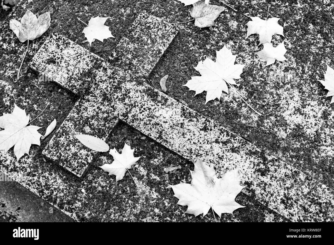 Christian grave in moss and autumn leaves. - Stock Image