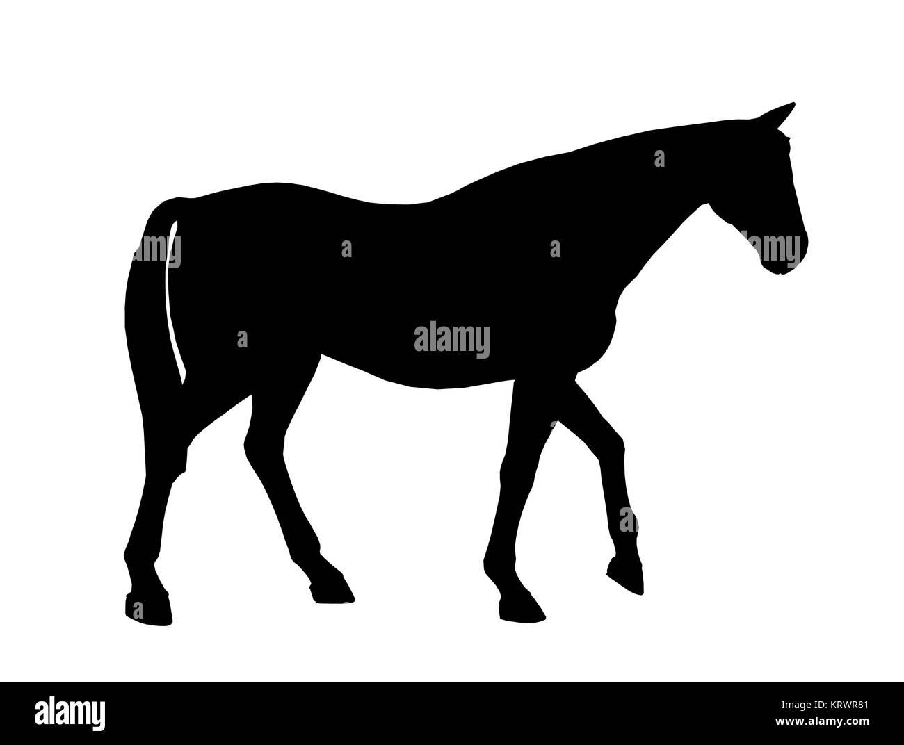 Black horse art illustration silhouette on a white background - Stock Image