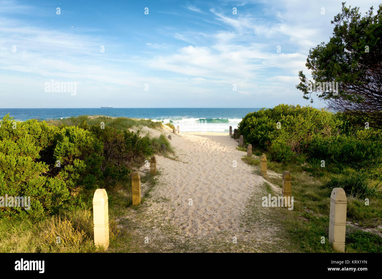 Pathway Over Sand Dunes to the Beach at Wollongon Australia Stock Photo