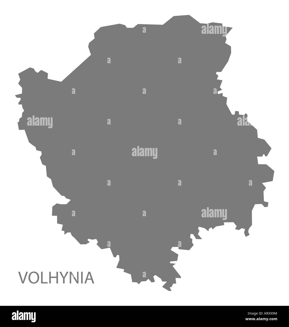 Veterinary clinics of the Volyn region: a selection of sites