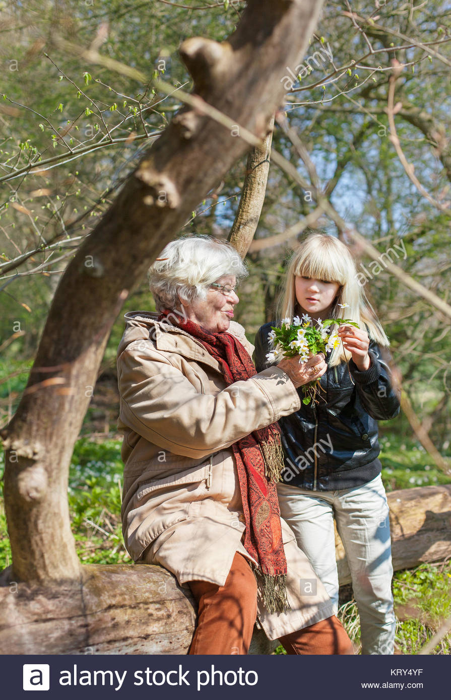 Girl gathering flowers with her grandmother - Stock Image