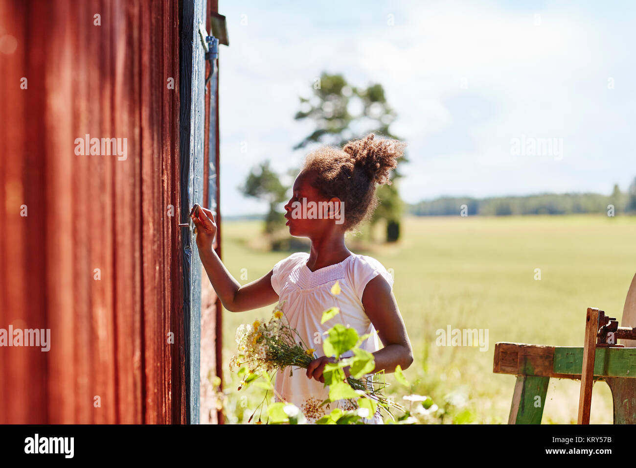 Girl holding flowers by barn - Stock Image