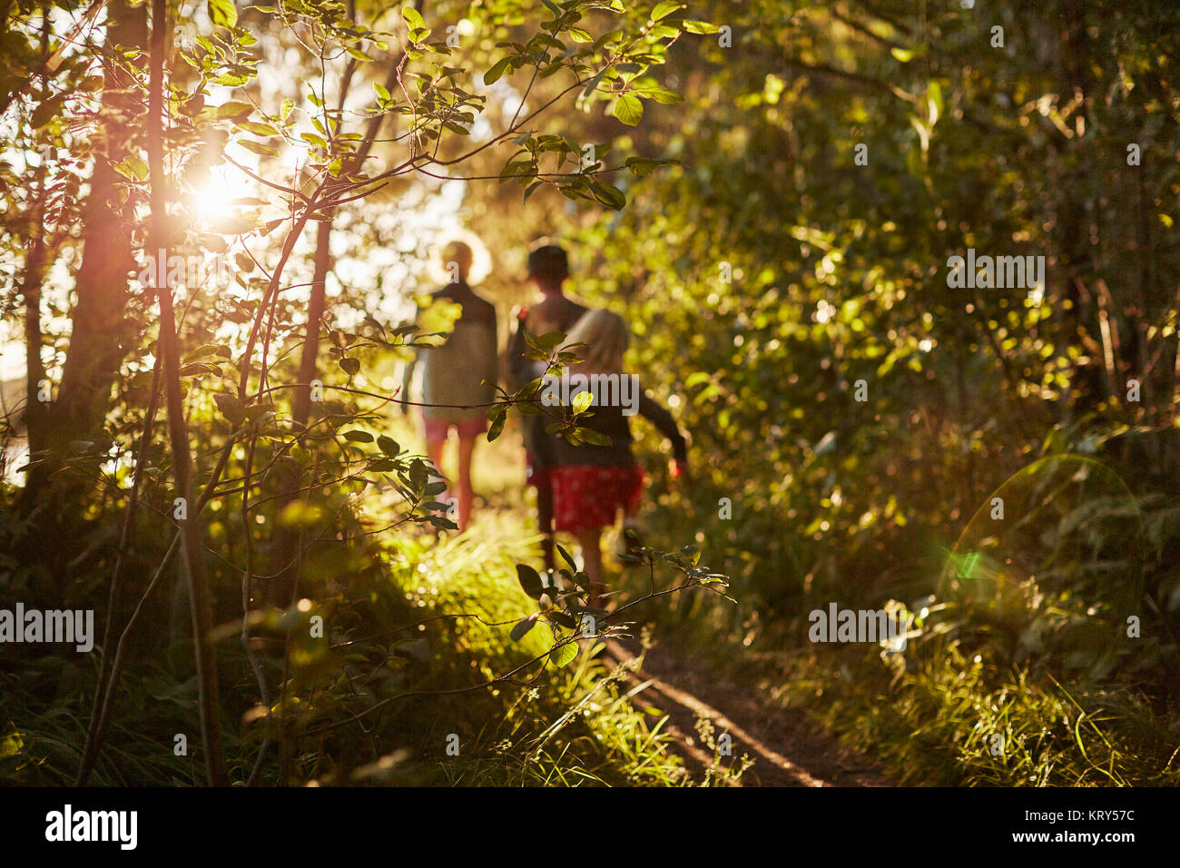 Children walking by trees - Stock Image