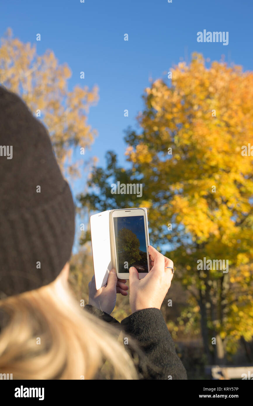 Woman taking photograph of tree - Stock Image