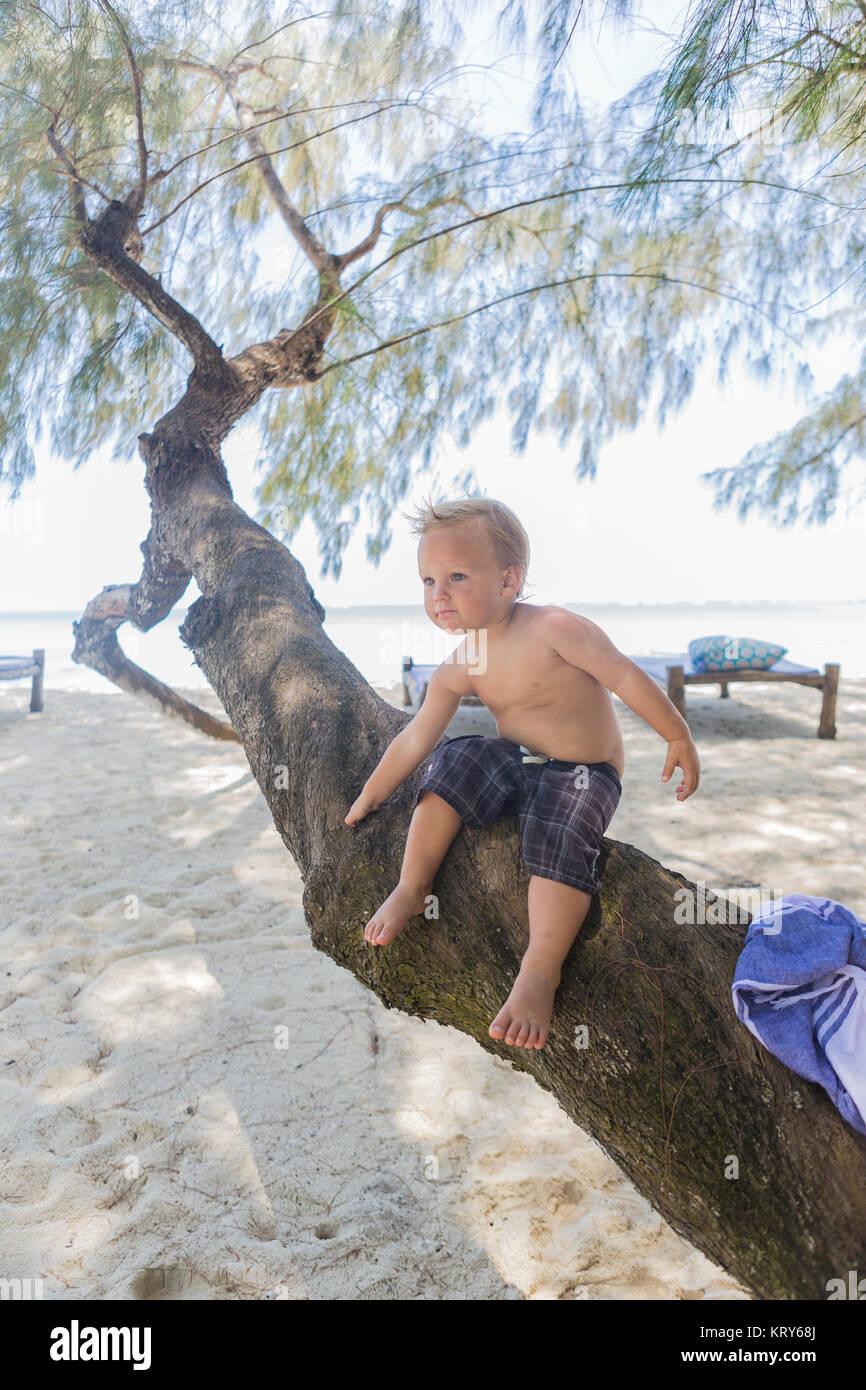 Toddler sitting on a tree branch at Diani Beach, Kenya - Stock Image