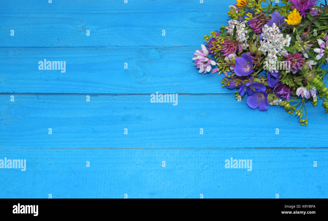 bunch of multi colored wildflowers on blue wood planks, greeting card - Stock Image