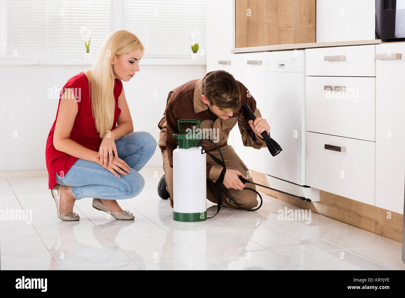 Woman Looking At Male Worker Spraying Insecticide - Stock Image