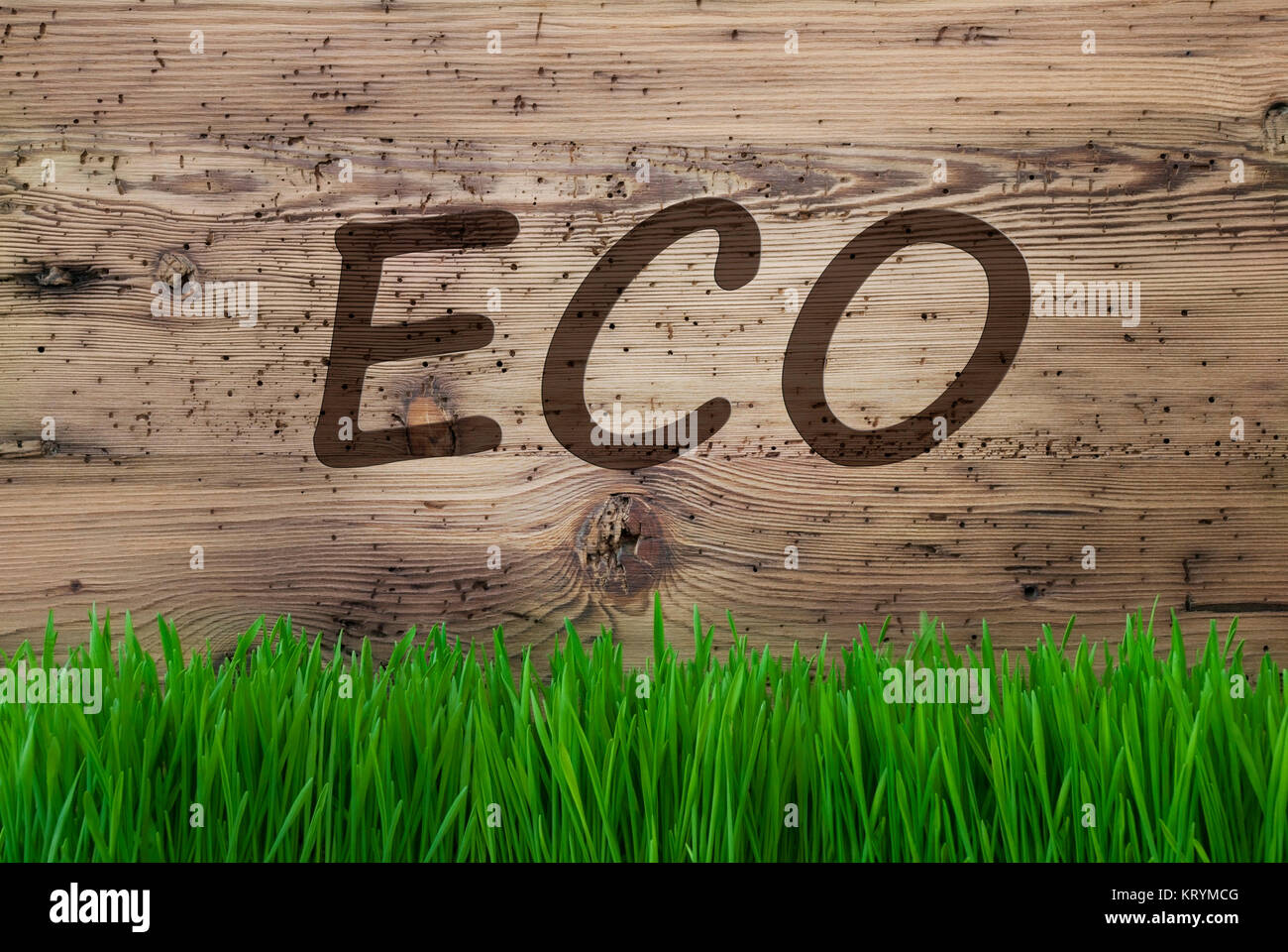 English Text Eco. Spring Season Greeting Card. Aged Wooden Background With Gras. Stock Photo