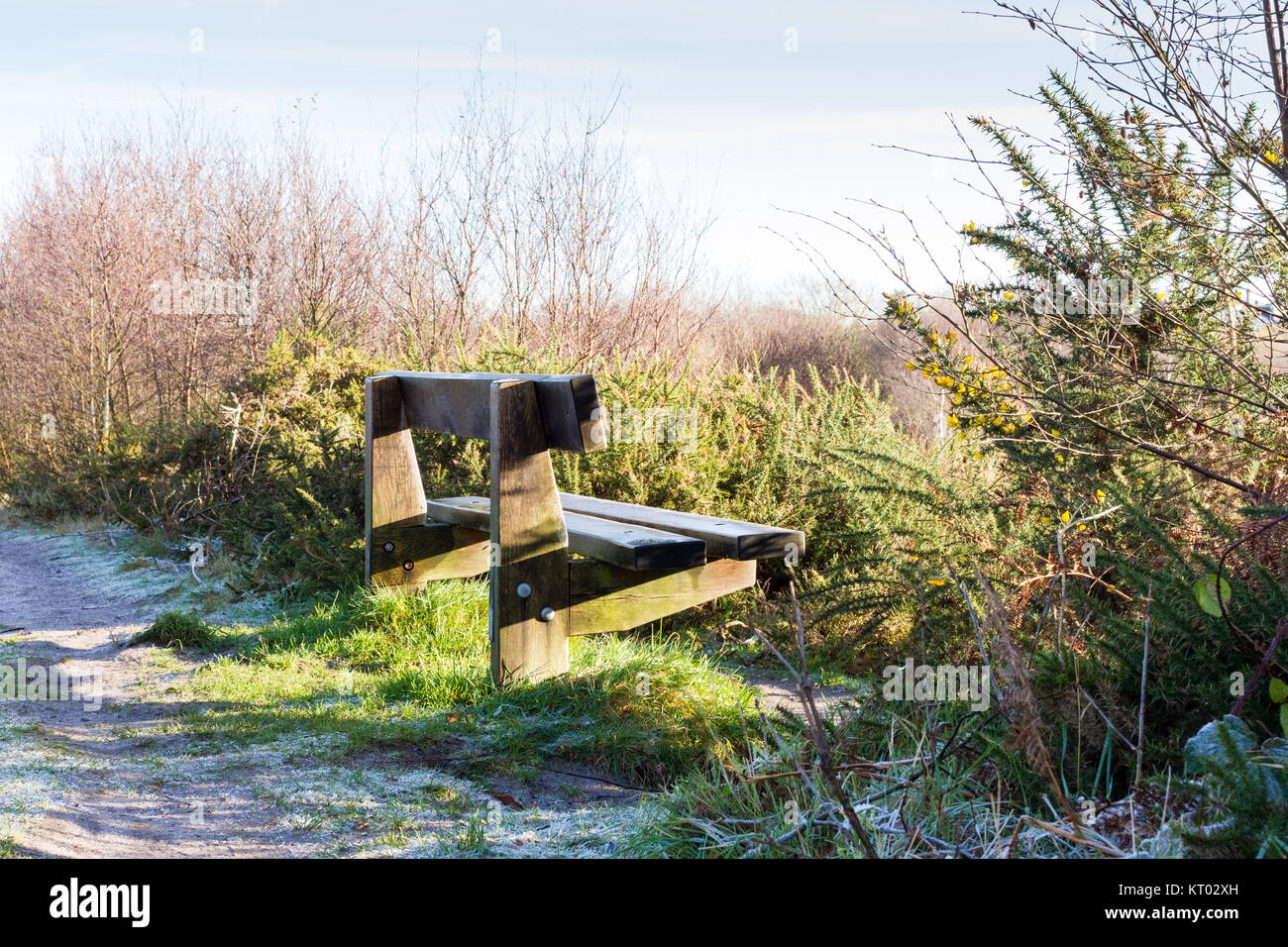 An empty wooden bench on a cold sunny winters day, Dorset, United Kingdom Stock Photo