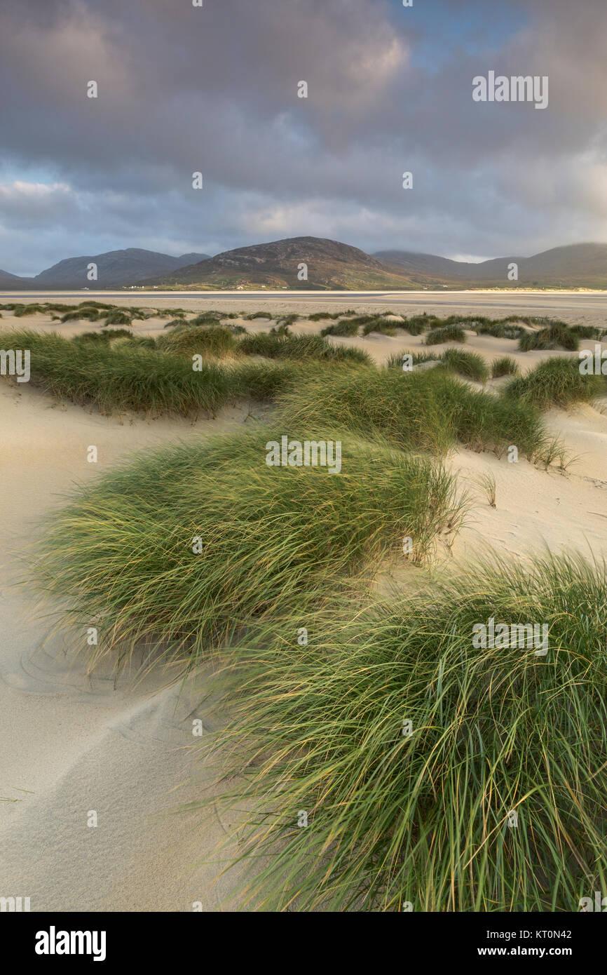 Luskentyre dunes, Isle of Harris, Outer Hebrides, Scotland, UK - Stock Image
