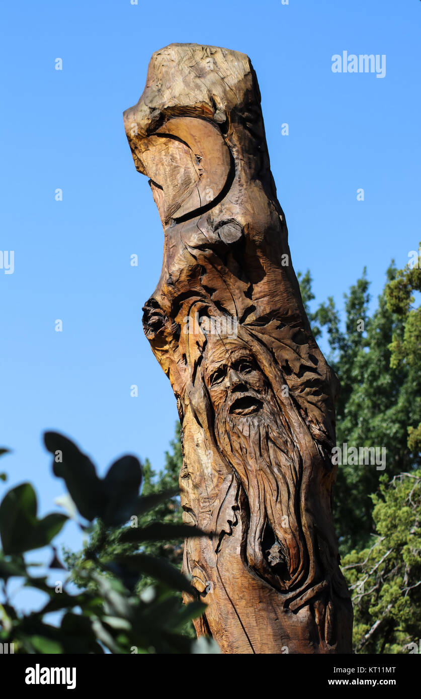 Carving of a green man and a moon in a tall stump-tree trunk at Linnaeus Teaching Garden in Tulsa Oklahoma USA 8 - Stock Image