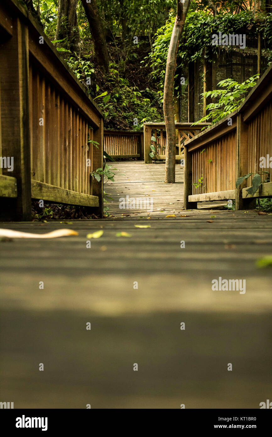 A lovely wooden trail - Stock Image