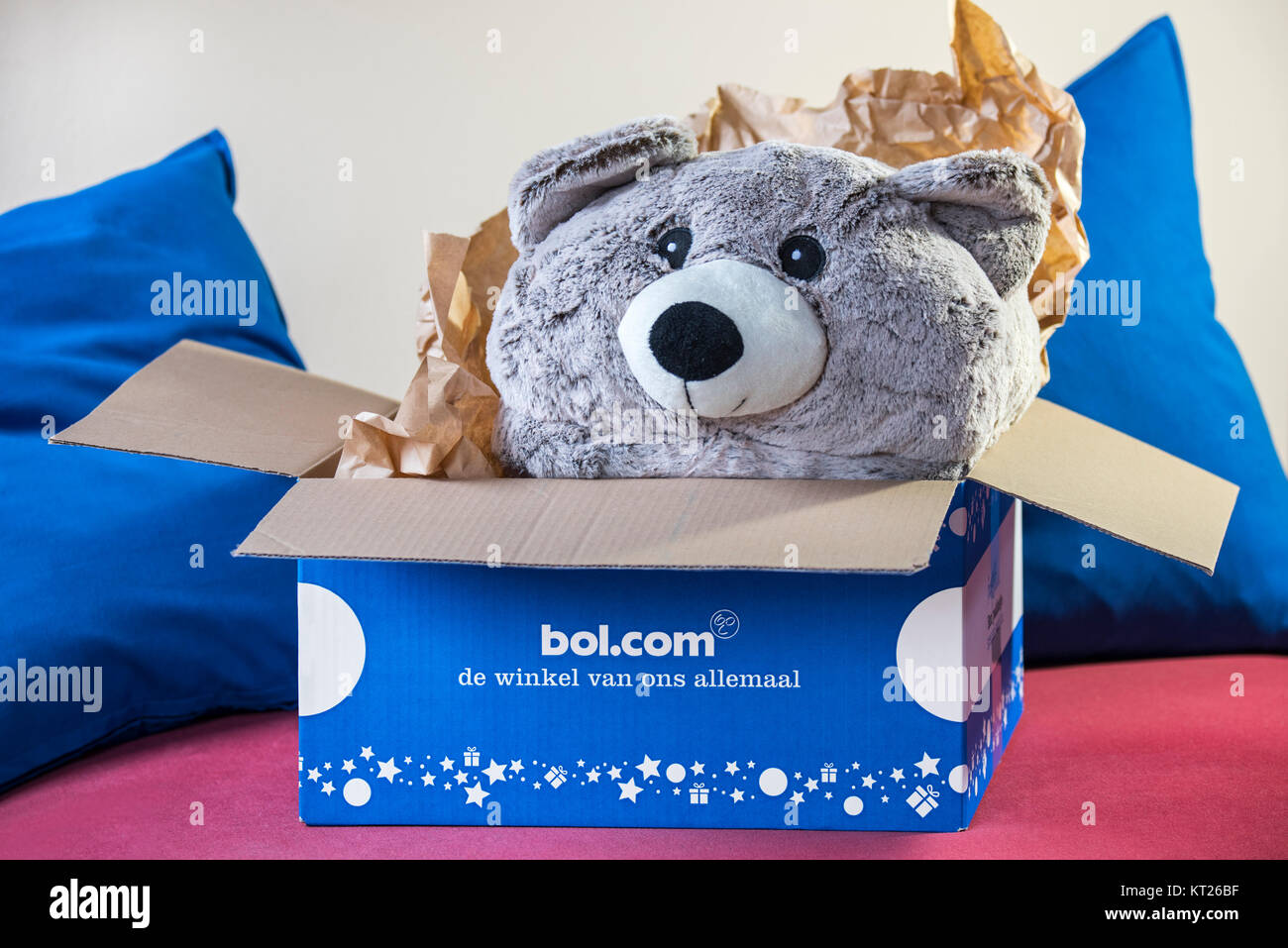 Cuddly bear / teddy bear present in open cardboard box bought at bol.com, leading webshop in the Netherlands for - Stock Image