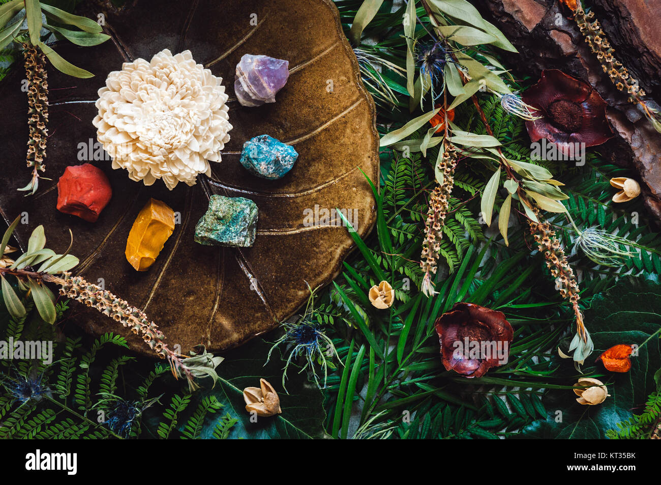 Rainbow of Crystals in order of Chakras with Botanicals - Stock Image