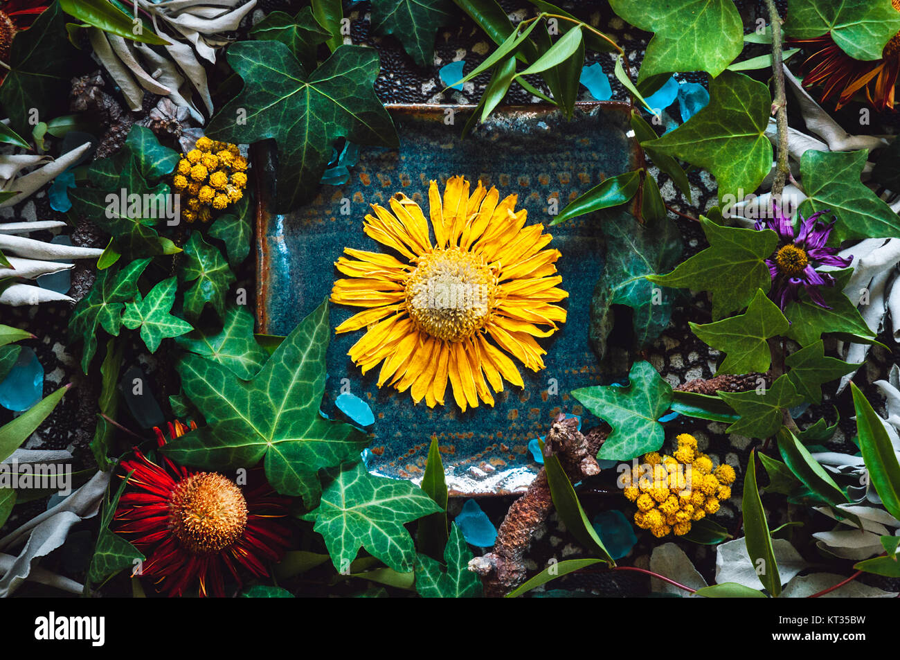 Dried Flowers and Sage with Ivy Stock Photo