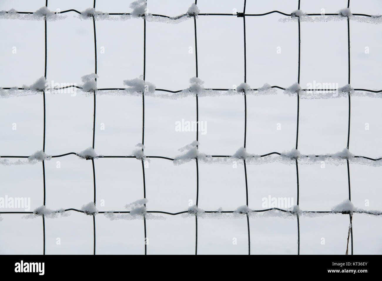 Snow on a wire fence in the Cotswolds. UK. Abstract pattern - Stock Image