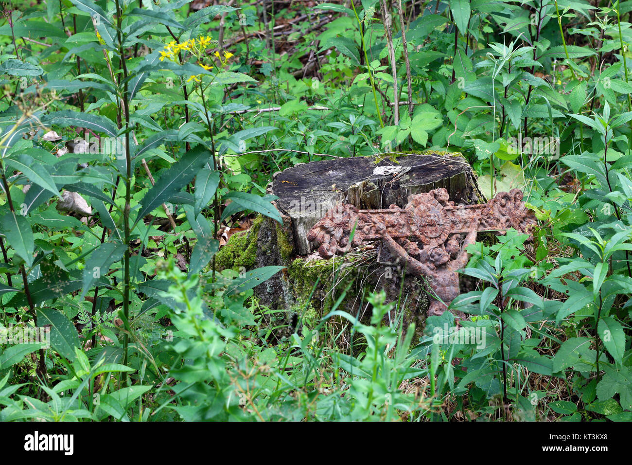 Old rusty cross with Jesus lost in the woods - Stock Image
