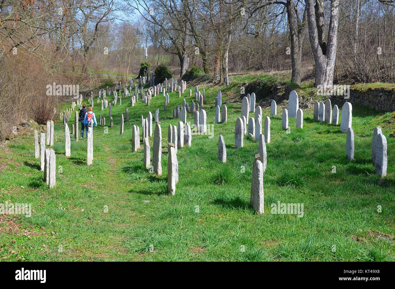 Švihov (Schwihau) in the Czech Republic: the Jewish graveyard - Stock Image