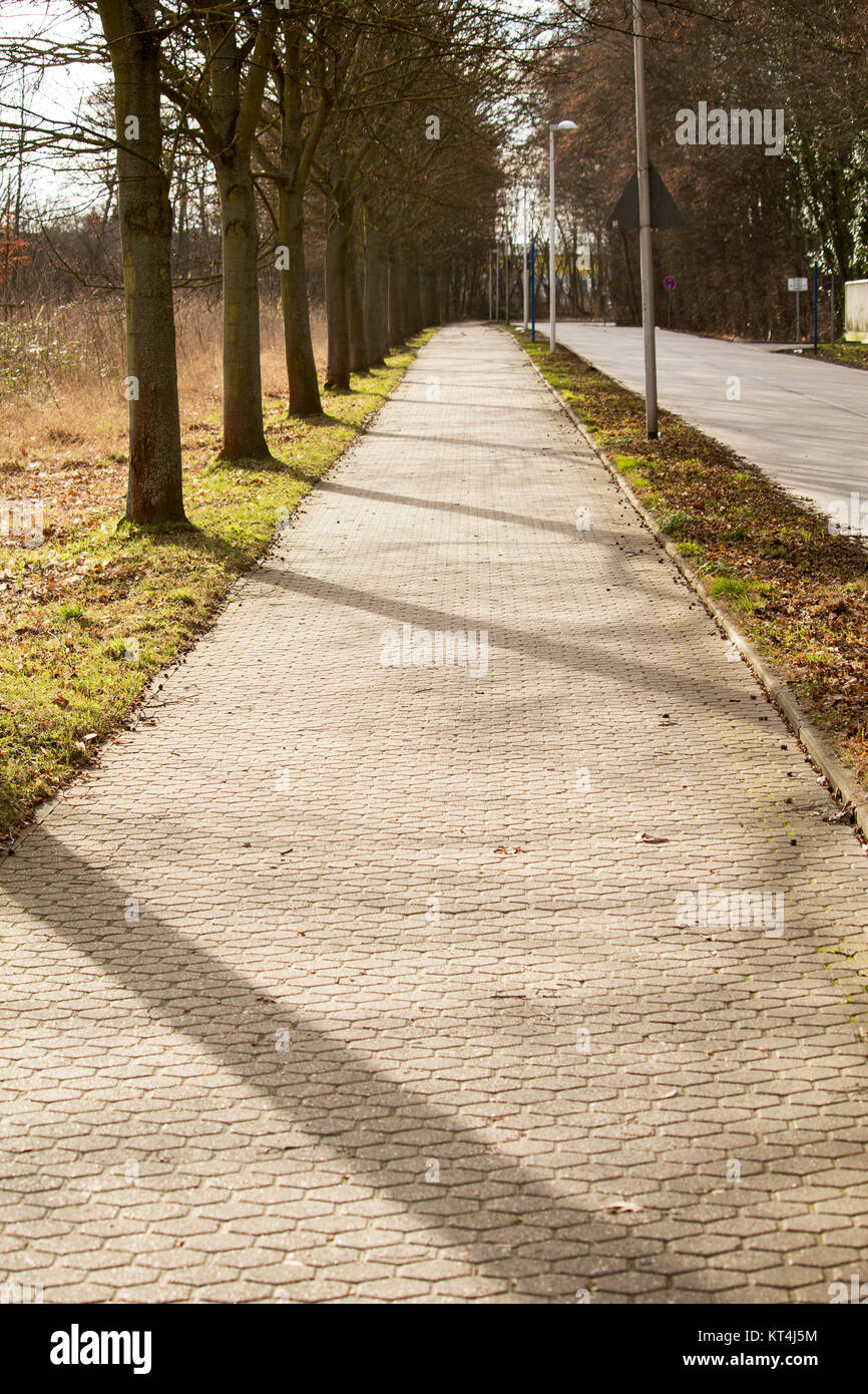 an avenue with sun and shadow play - Stock Image