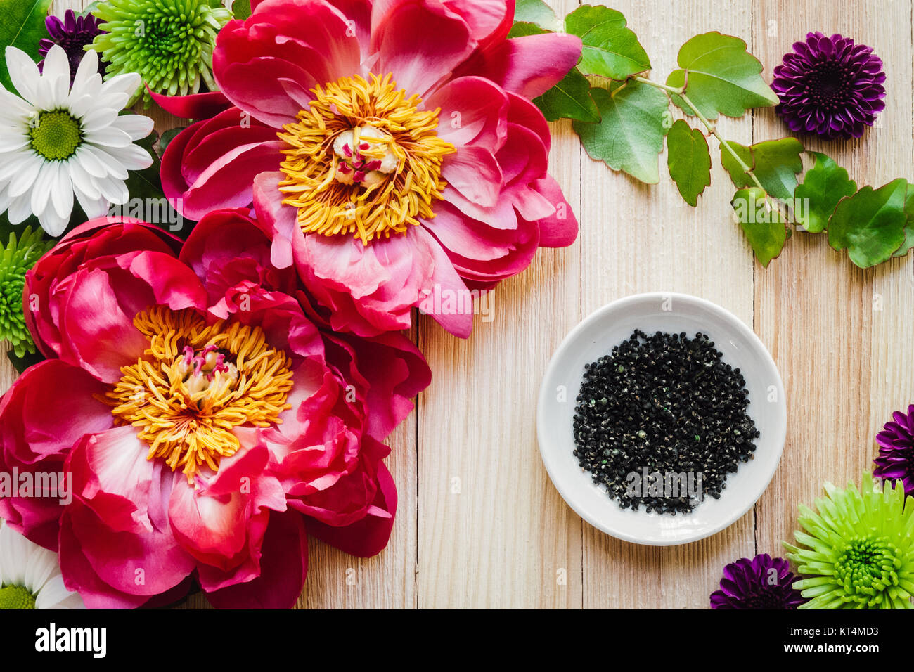 Peony Flowers with Daisies and Poms on Cedar Table - Stock Image