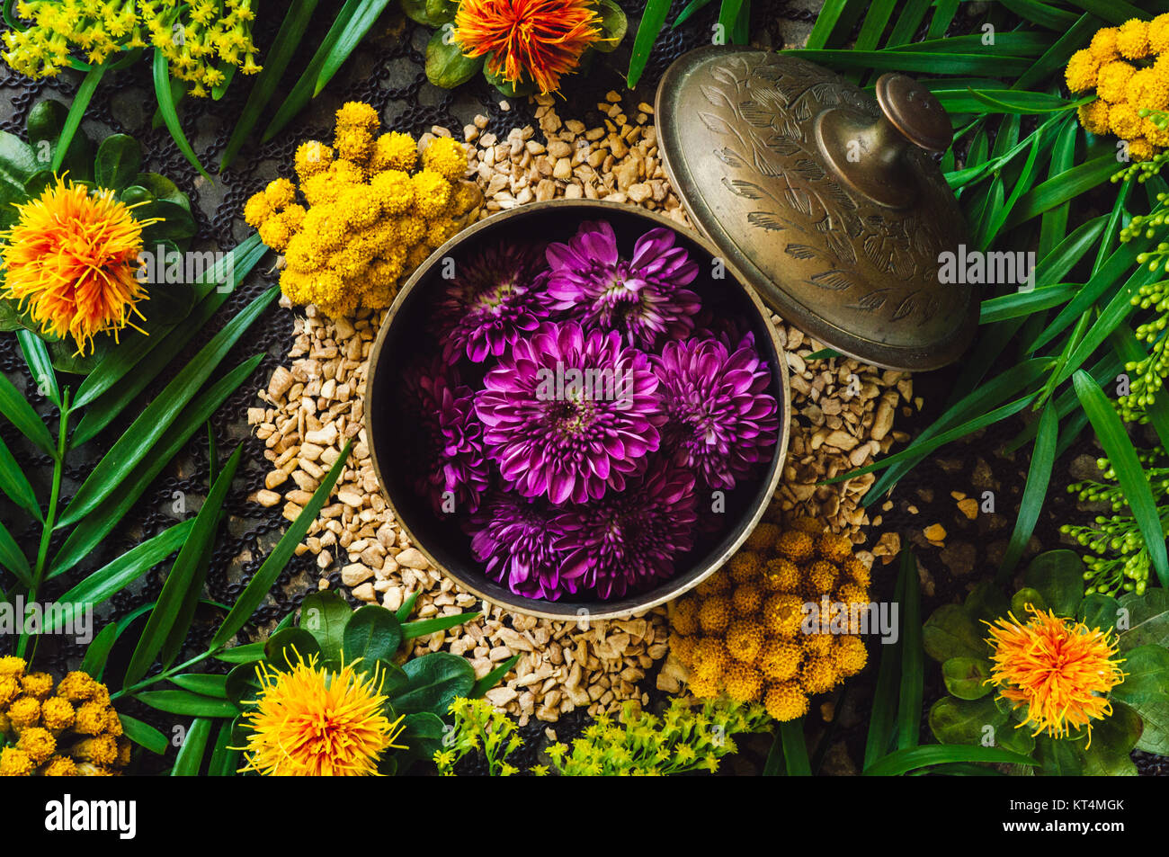 Brass Container with Purple Chrysanthemum Flowers on Ginger Spill - Stock Image
