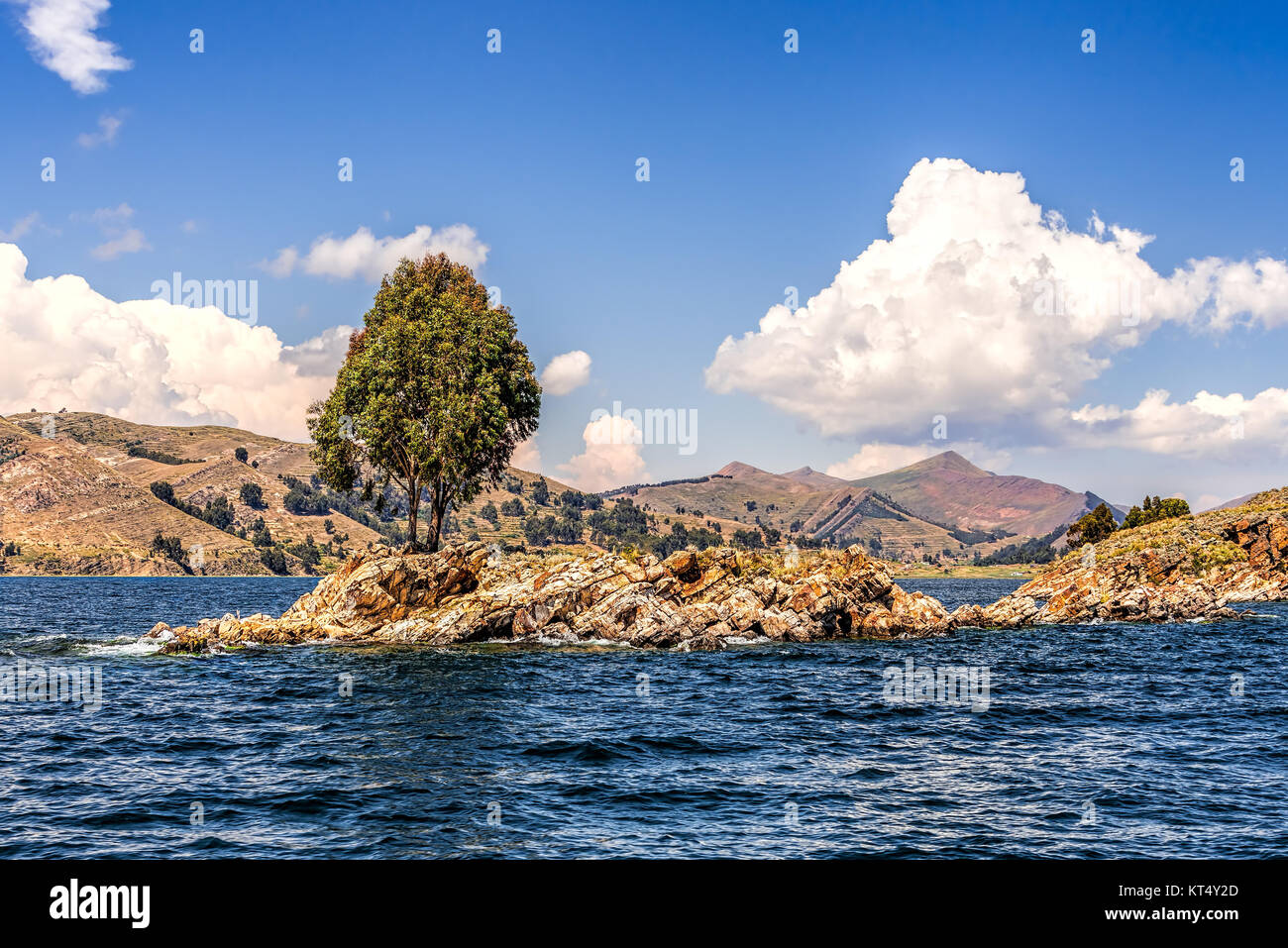 Lonely tree on a small rocky island on a lake under blue skies with fluffy white clouds Stock Photo