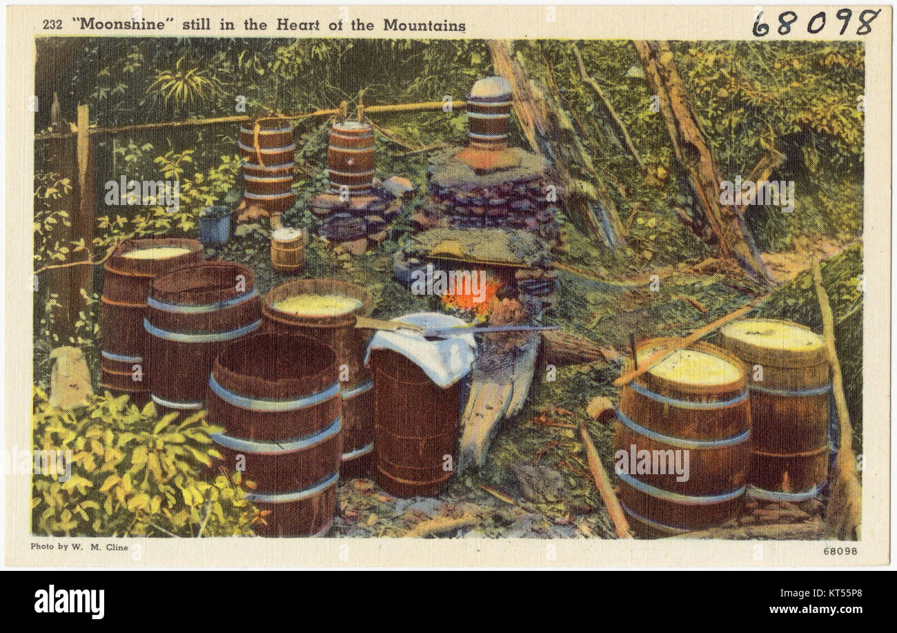 Moonshine still in the heart of the mountain (68098) - Stock Image