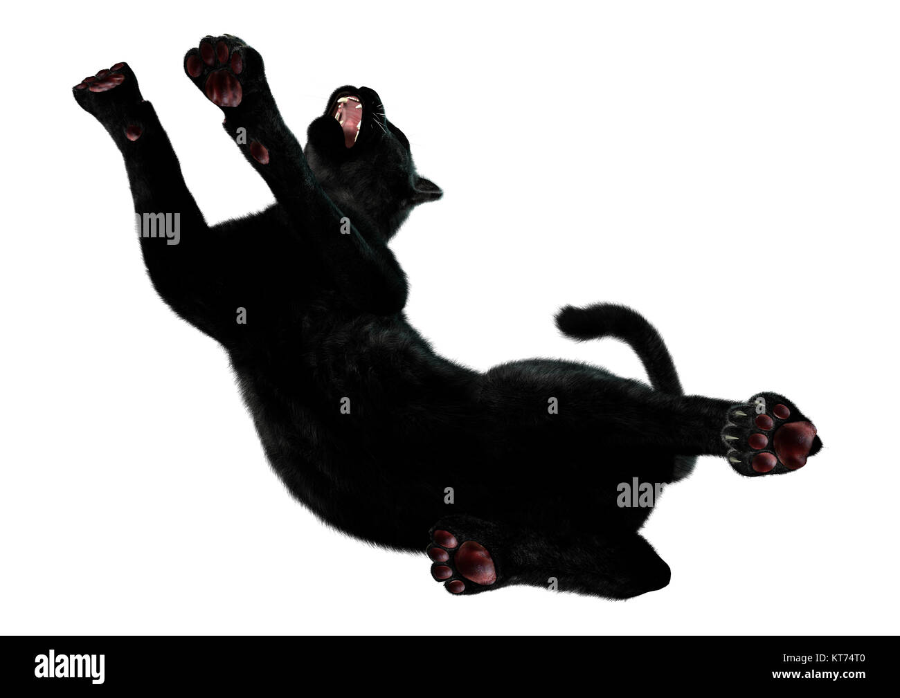 Black Panther Cut Out Stock Images & Pictures - Alamy