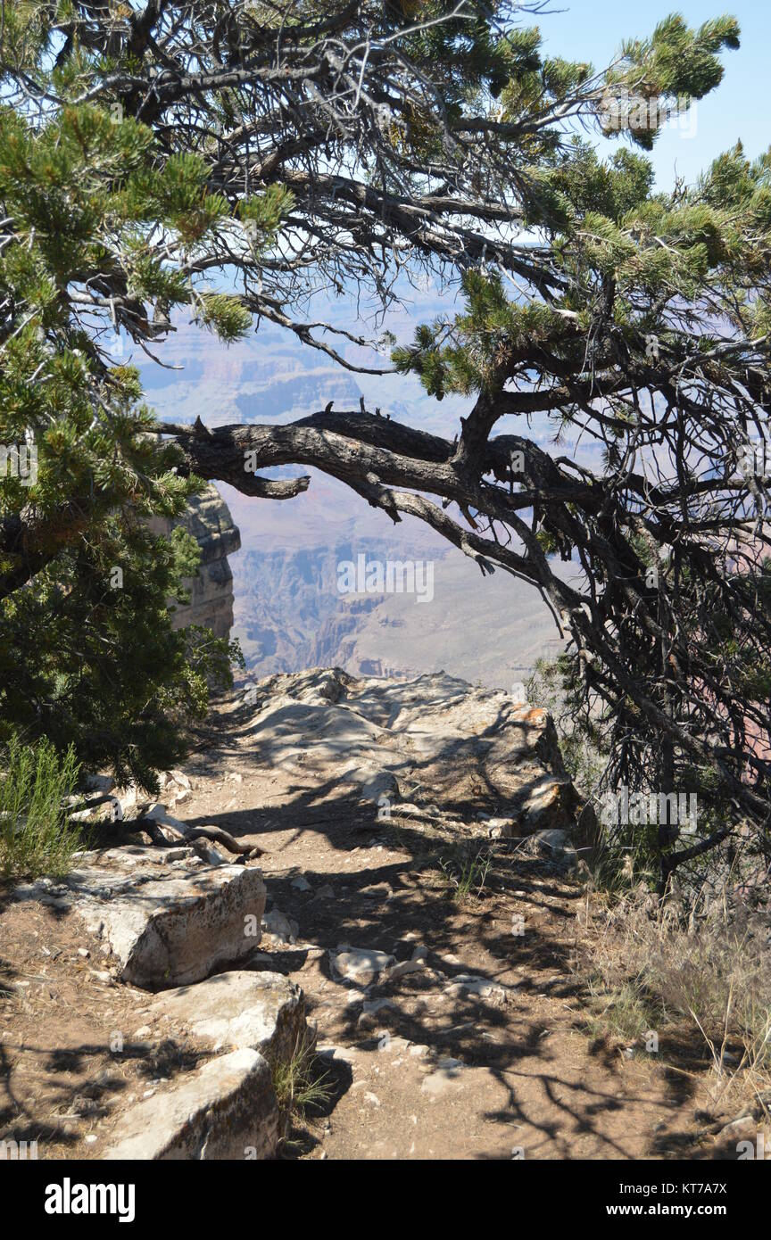 Grand Canyon Of The Colorado River. South Kaibab Trailhead. Geological formations. June 22, 2017. Grand Canyon, - Stock Image
