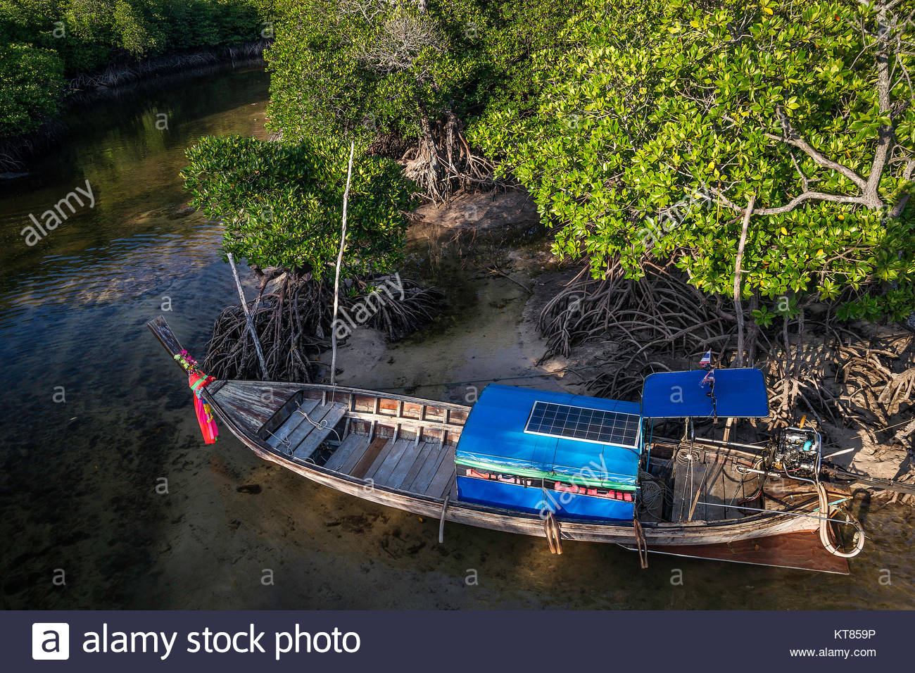 Long tail boat in the mangrove - Koh Phi Phi Don - Thailand Stock Photo