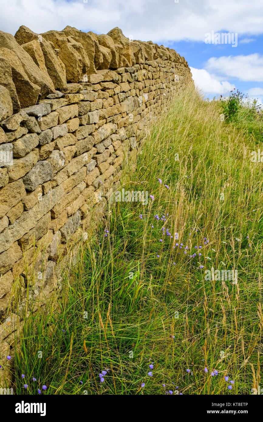 Cotswold Stone Wall, adjacent to the Cotswold Way, Following the Contours of the Hill, Broadway Tower, Near Broadway, - Stock Image
