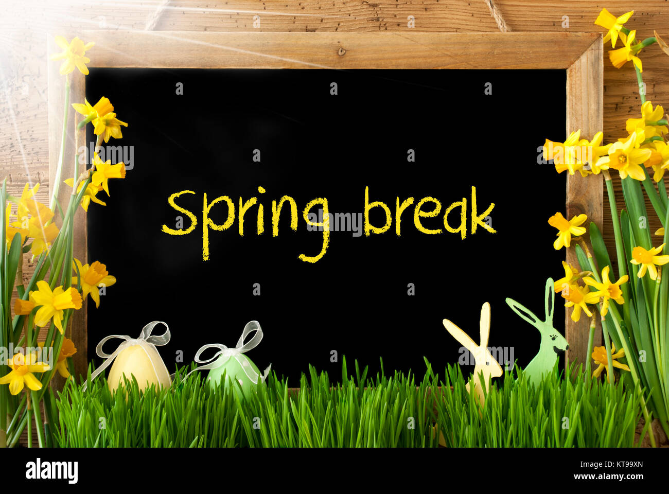 Blackboard with english text spring break sunny spring flowers blackboard with english text spring break sunny spring flowers nacissus or daffodil with grass easter egg and bunny rustic aged wooden background mightylinksfo