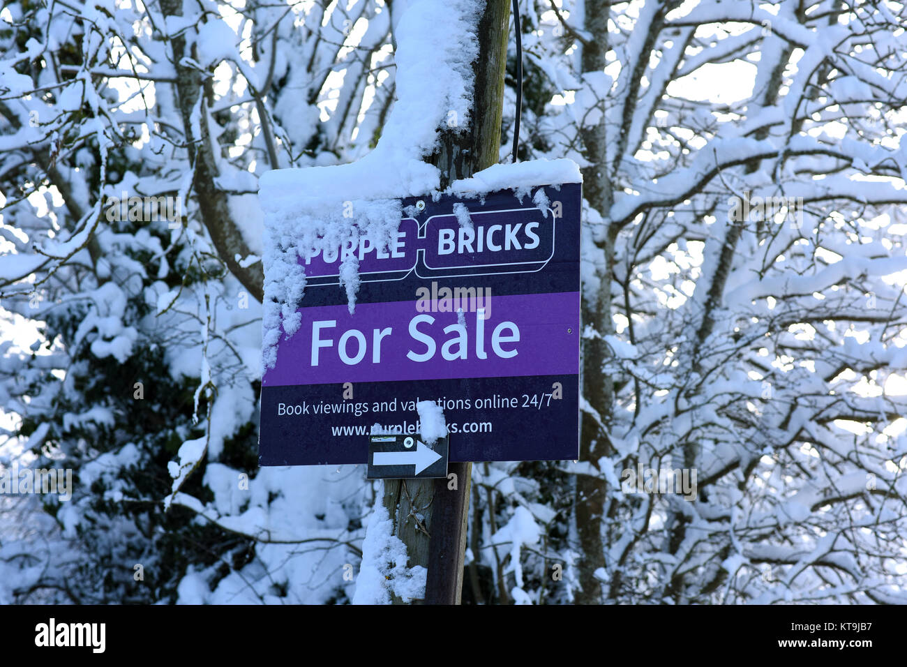 House for sale sign covered in winter snow 2017 - Stock Image