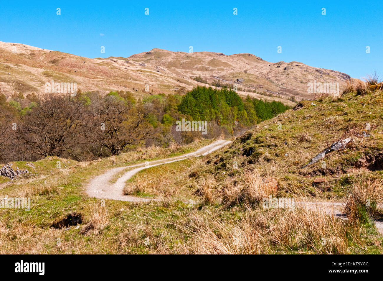 Mountains and trail of the West Highland Way near Inverarnan, Scotland - Stock Image