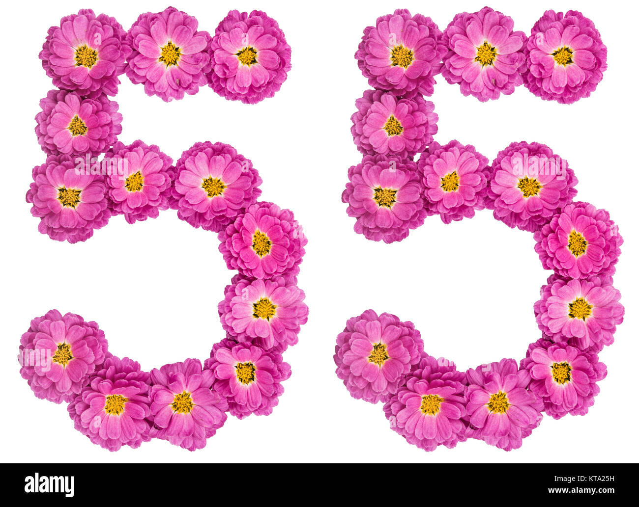 Arabic numeral 55, fifty five, from flowers of chrysanthemum, isolated on  white background 96943360a8