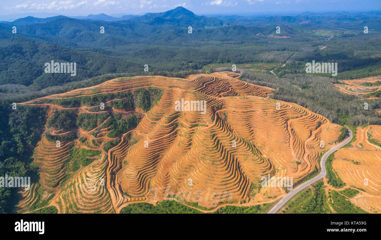 aerial photography at the big mountain is cut make a floor to grow palm trees. the mountain look like stairs - Stock Image