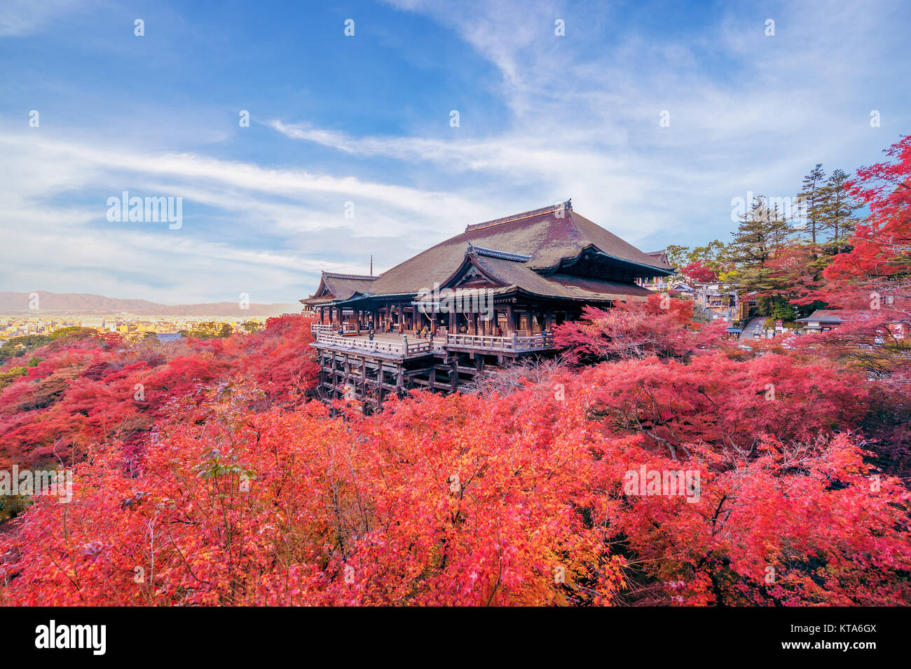 Kiyomizu-dera stage with fall colored leaves - Stock Image