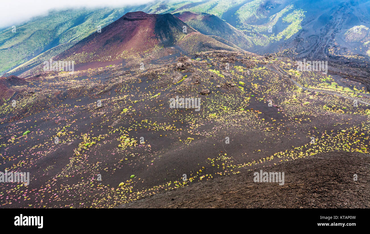 hardened lava fields and craters on Mount Etna - Stock Image
