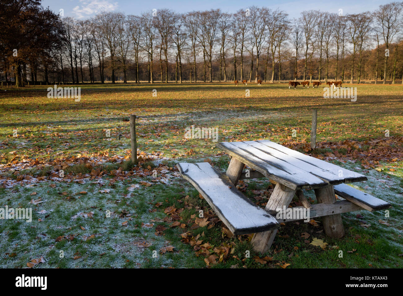 Riped picnic bench near Hernen castle in the Dutch province Gelderland Stock Photo