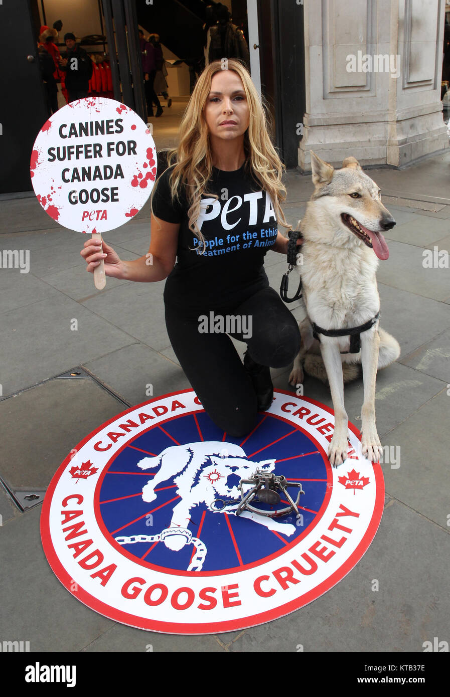 London, UK. 8th December, 2017. Anneka Svenska and Her Canine Companion protest outside Canada Goose flagship store - Stock Image