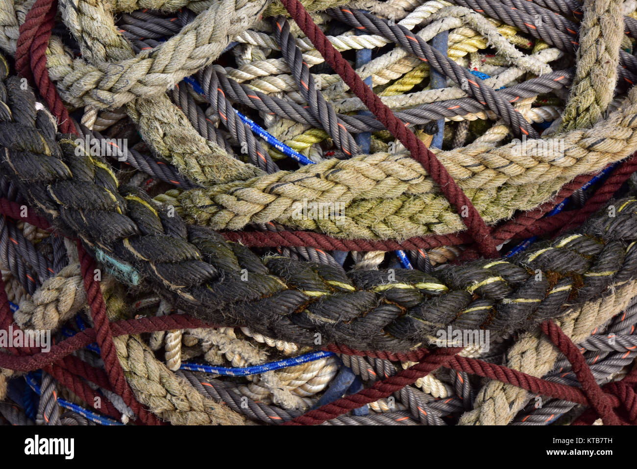 a big knotted mess of lots of differently sized and colourful ropes tied together in a tangle. coloured ropes and - Stock Image