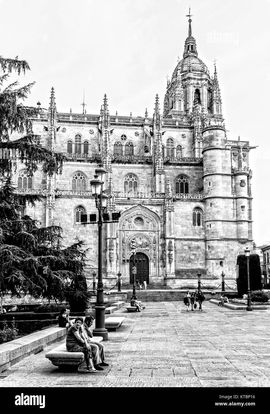 Catedral de Salamanca. Ciudad Patrimonio de la Humanidad. Castilla León. España - Stock Image