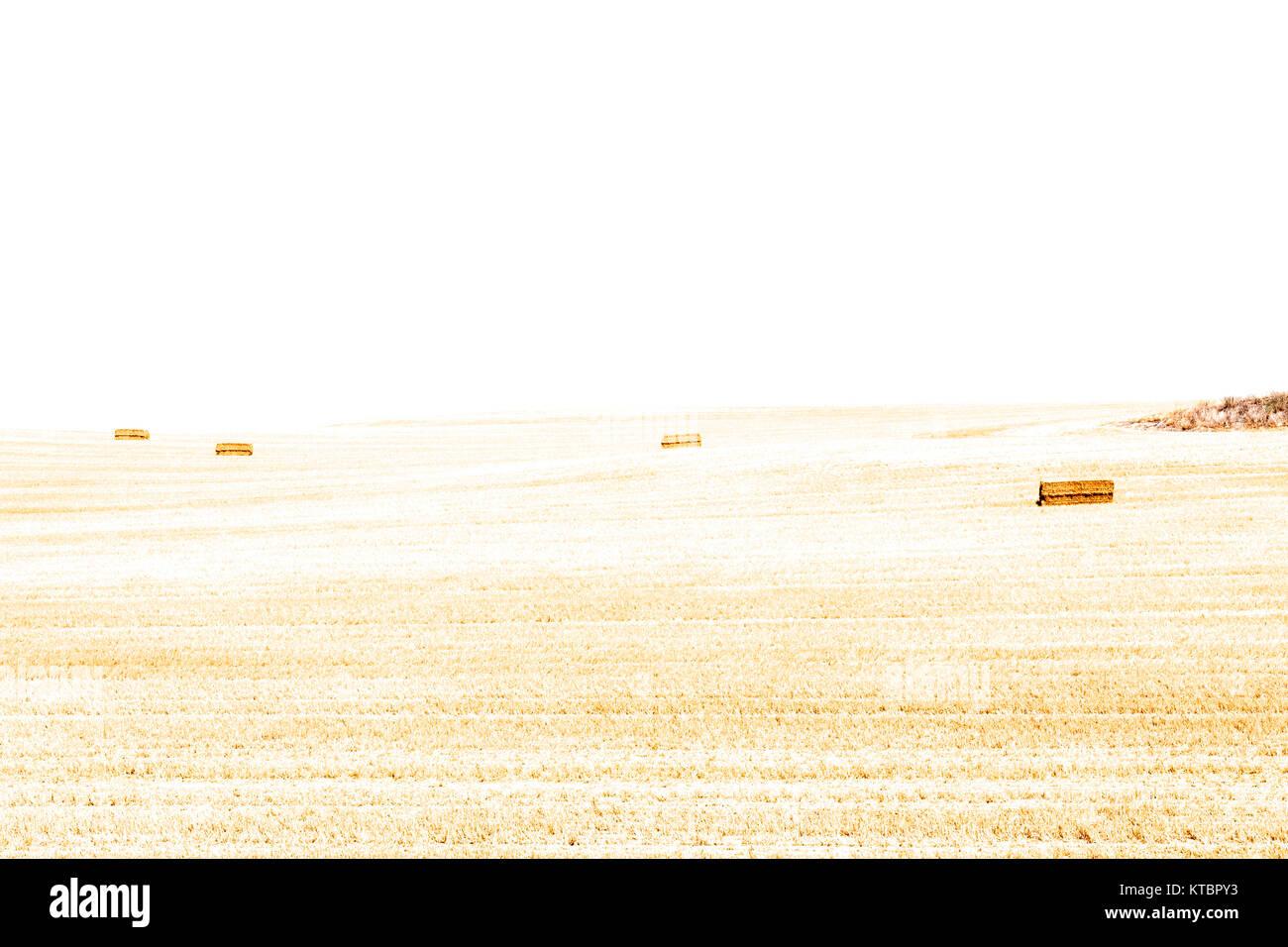 Alpacas de paja. Segovia. Castilla León. España. Ciudad patrimonio de la humanidad. Unesco. - Stock Image