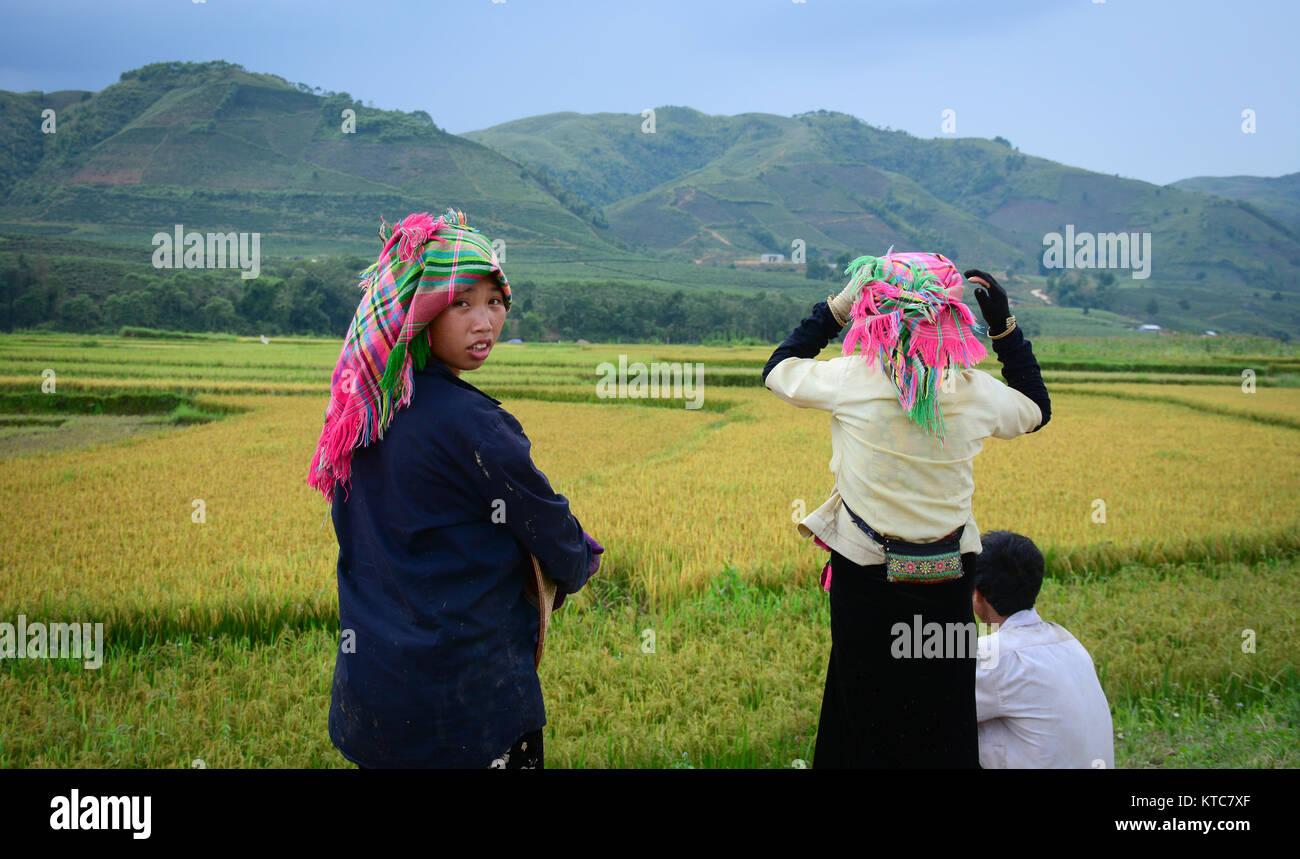 Sapa, Vietnam - May 29, 2016  Hmong women standing on field