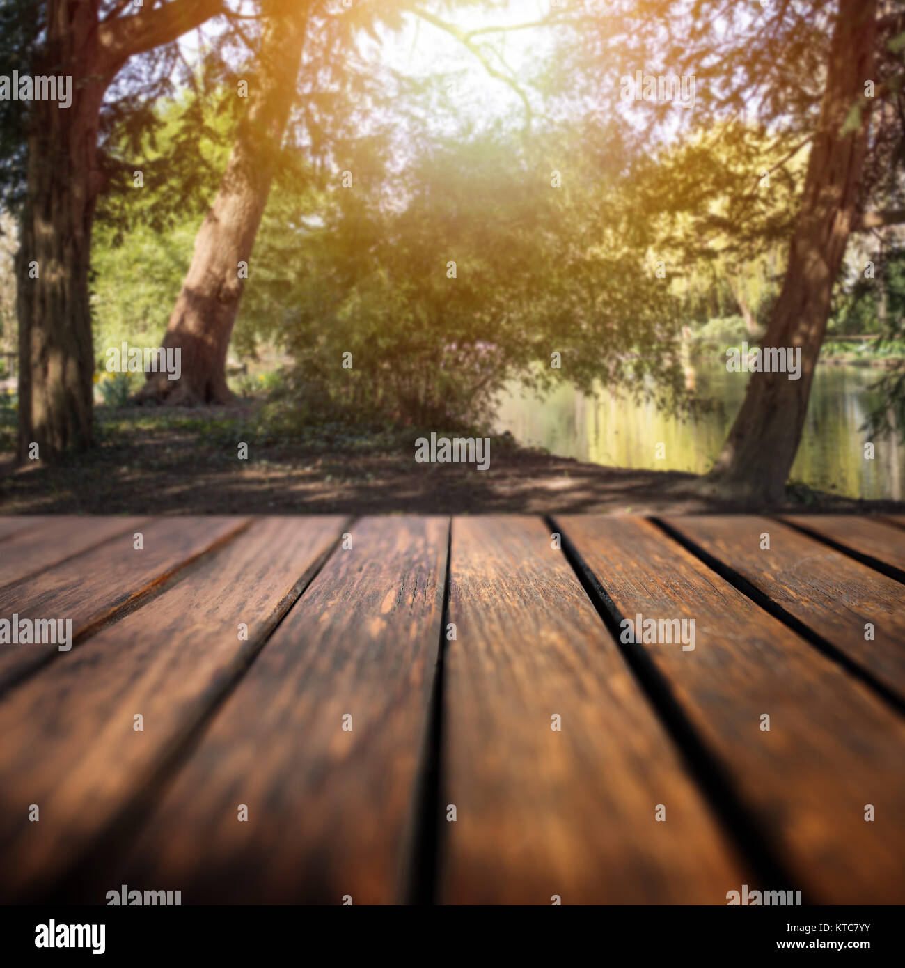 Forest lake with sun and an empty wooden table for a leisure concept Stock Photo