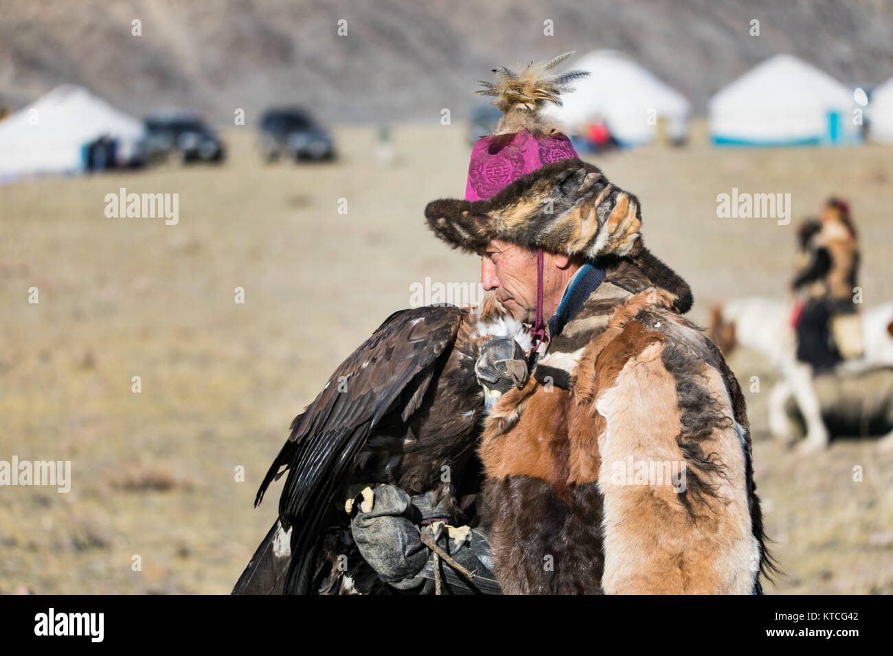 Kazakh eagle hunter spends downtime with his eagle during Golden Eagle Festival in Mongolia - Stock Image